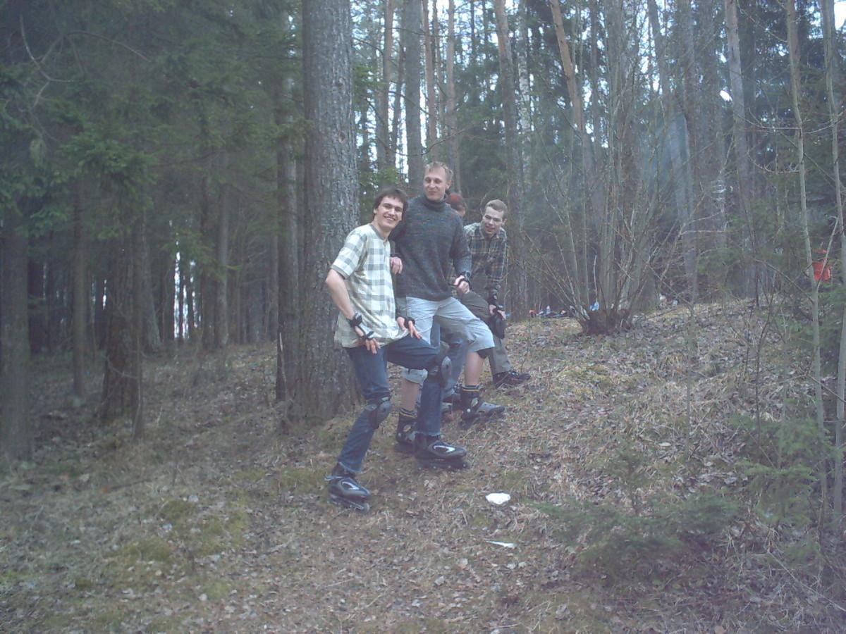 Раубичи. В лесу.